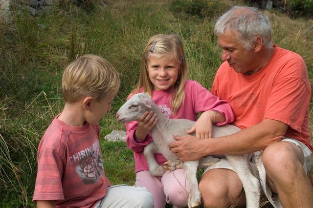 enfants et agneau